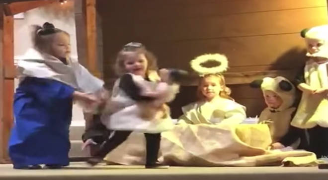 Mary tries to take the baby doll back from the sheep in the nativity play