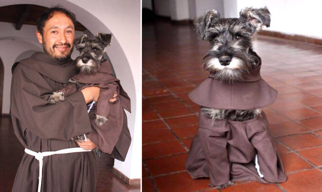 Monastery adopts a dog, and he's the cutest friar