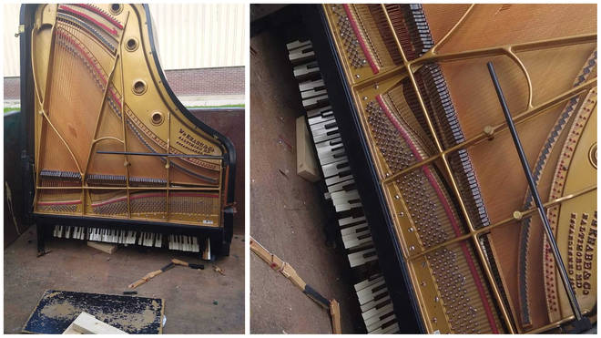 Piano technician finds grand piano left in dumpster for waste
