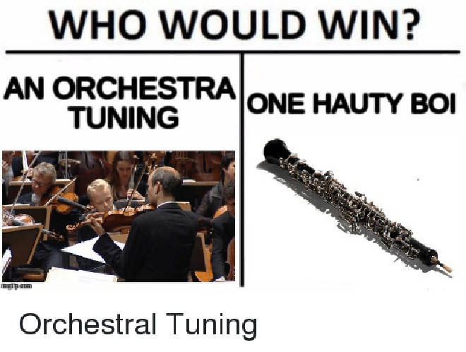 10 Classical Music Who Would Win Memes That Will Make You Snort