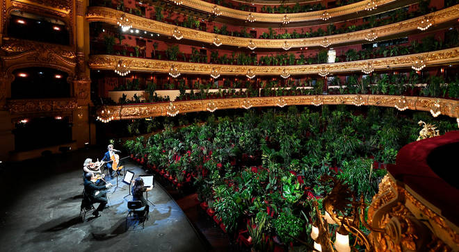 The string quartet will serenaded the audience of plants at Barcelona's Liceu on Monday