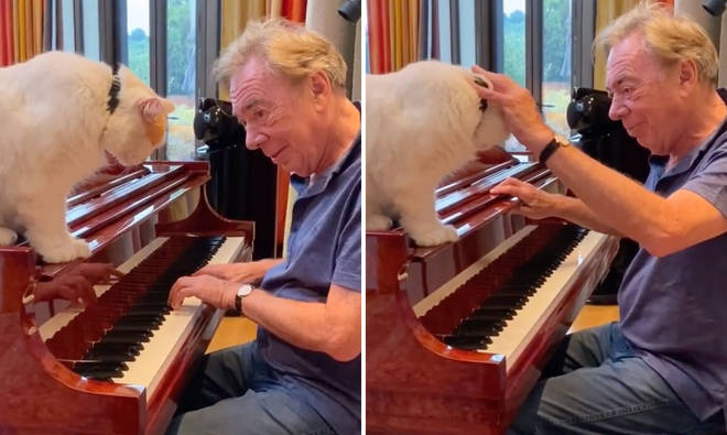 Andrew Lloyd Webber plays the piano for his cat in heartwarming video