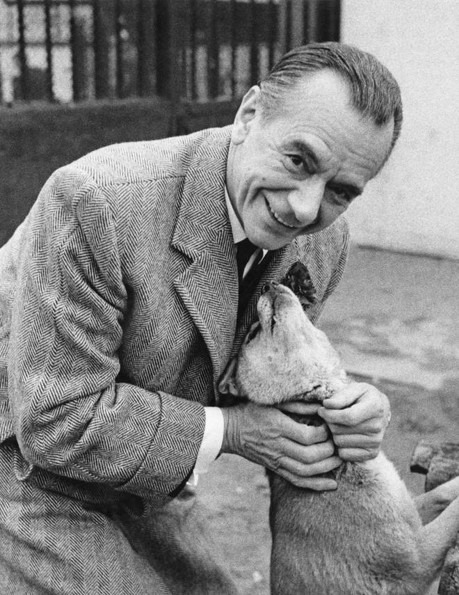 In 1964, English conductor Sir Malcolm Sargent gifted a New Guinea Singing Dog to a London Zoo