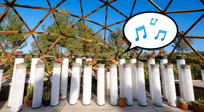 This is the world's first piano made entirely from plants