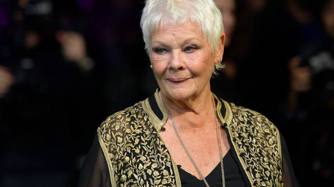 Dame Judi Dench on the red carpet, announcing her role in Cats