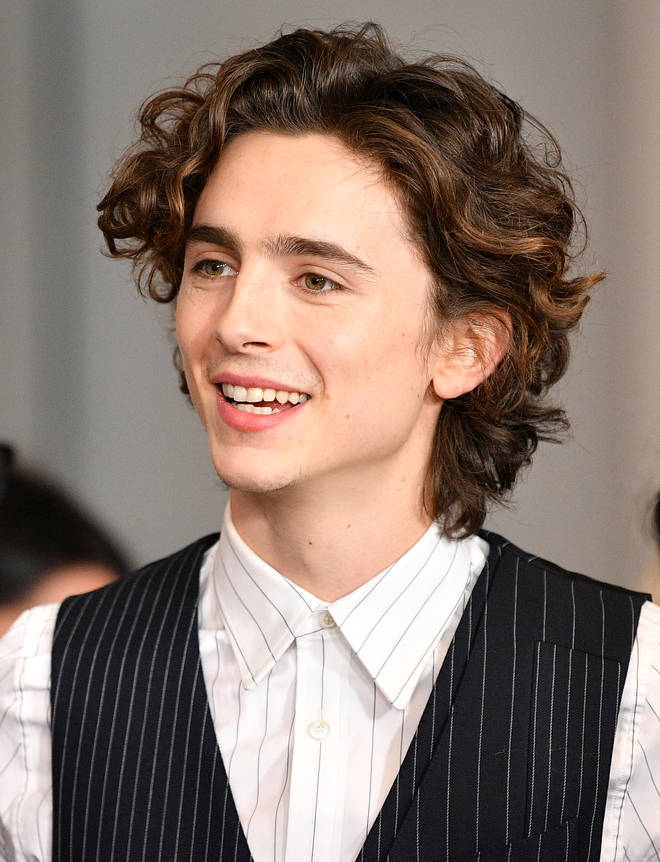 Timothée Chalamet took piano lessons for Call Me by Your Name