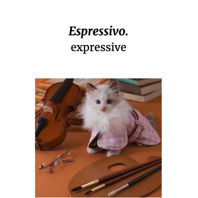 Espressivo