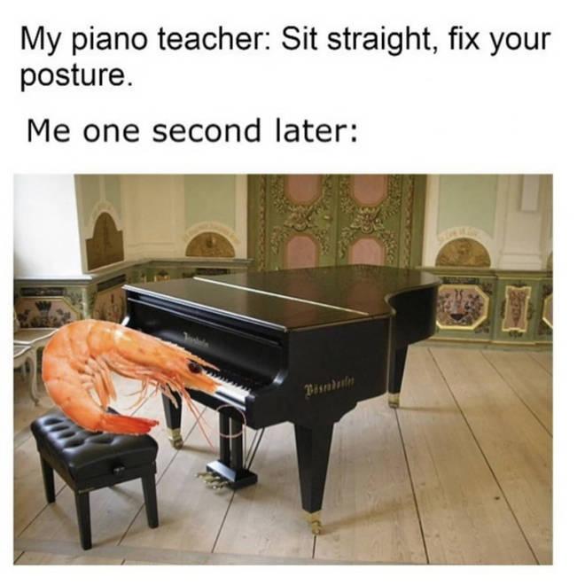 Prawn piano