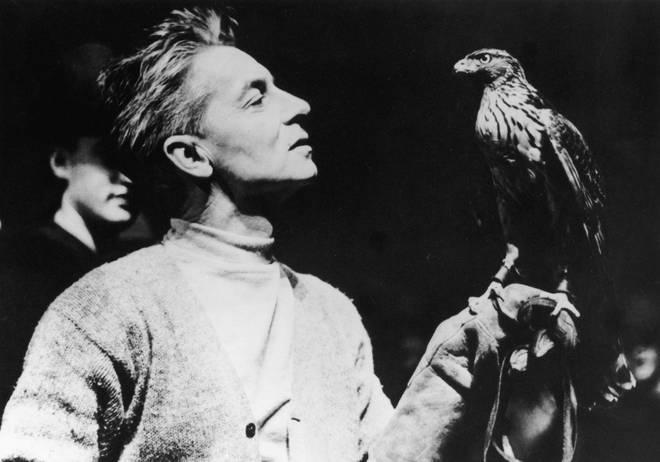 Austrian conductor Herbert von Karajan enjoying a spot of falconry. (1955)