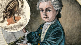 No one believed Mozart was only nine years old until he started playing with a cat