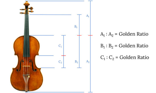 Stradivari used the Fibonacci Sequence and the Golden Ratio to make his violins