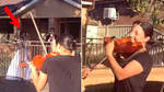 Violinist spots new neighbours having a lockdown wedding, walks into the road to serenade them