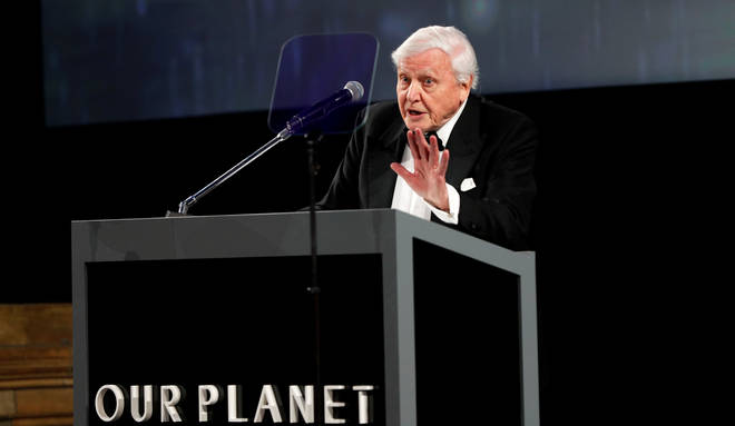Sir David Attenborough speaks at the Our Planet Global Premiere