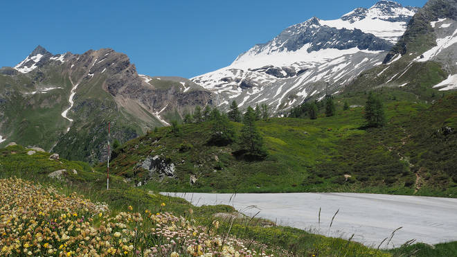 Their plane crashed in the Simplon Pass, near the Italian-Swiss border