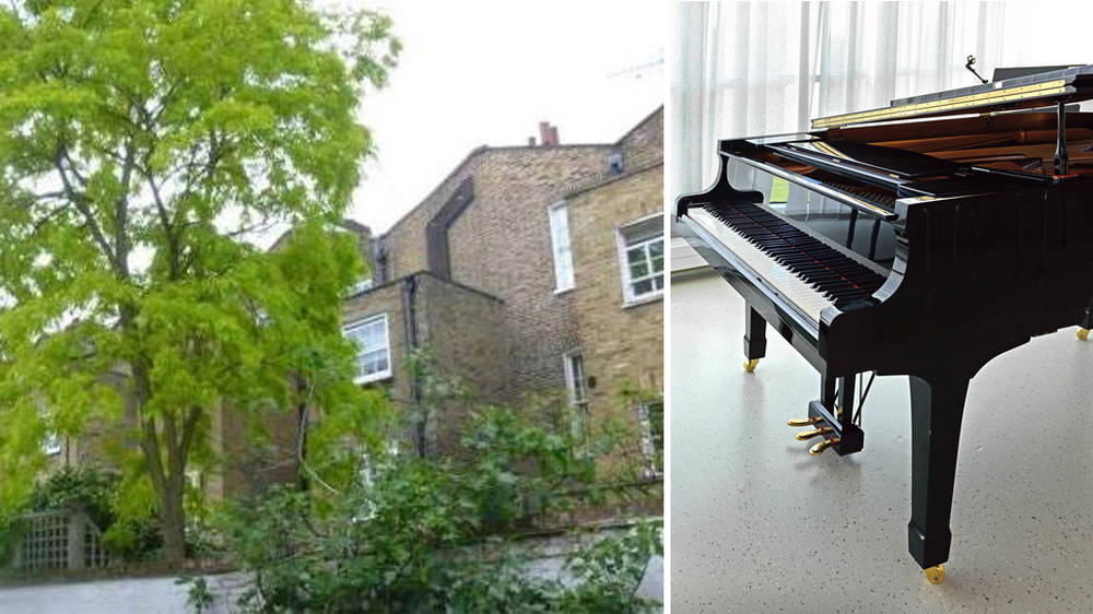 Neighbours argue over classical pianist's 'attempt' to chop down beautiful tree in garden