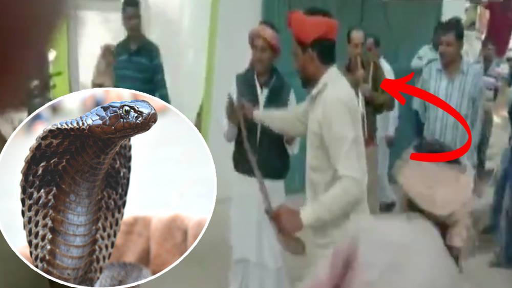 Police officer plays snake charmer's flute to capture snake in station