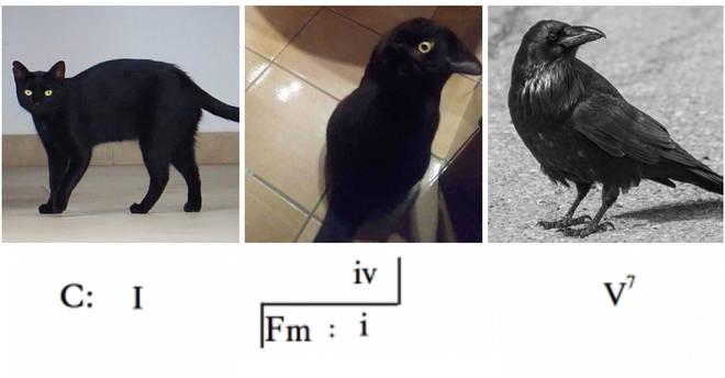 Cat crow modulation