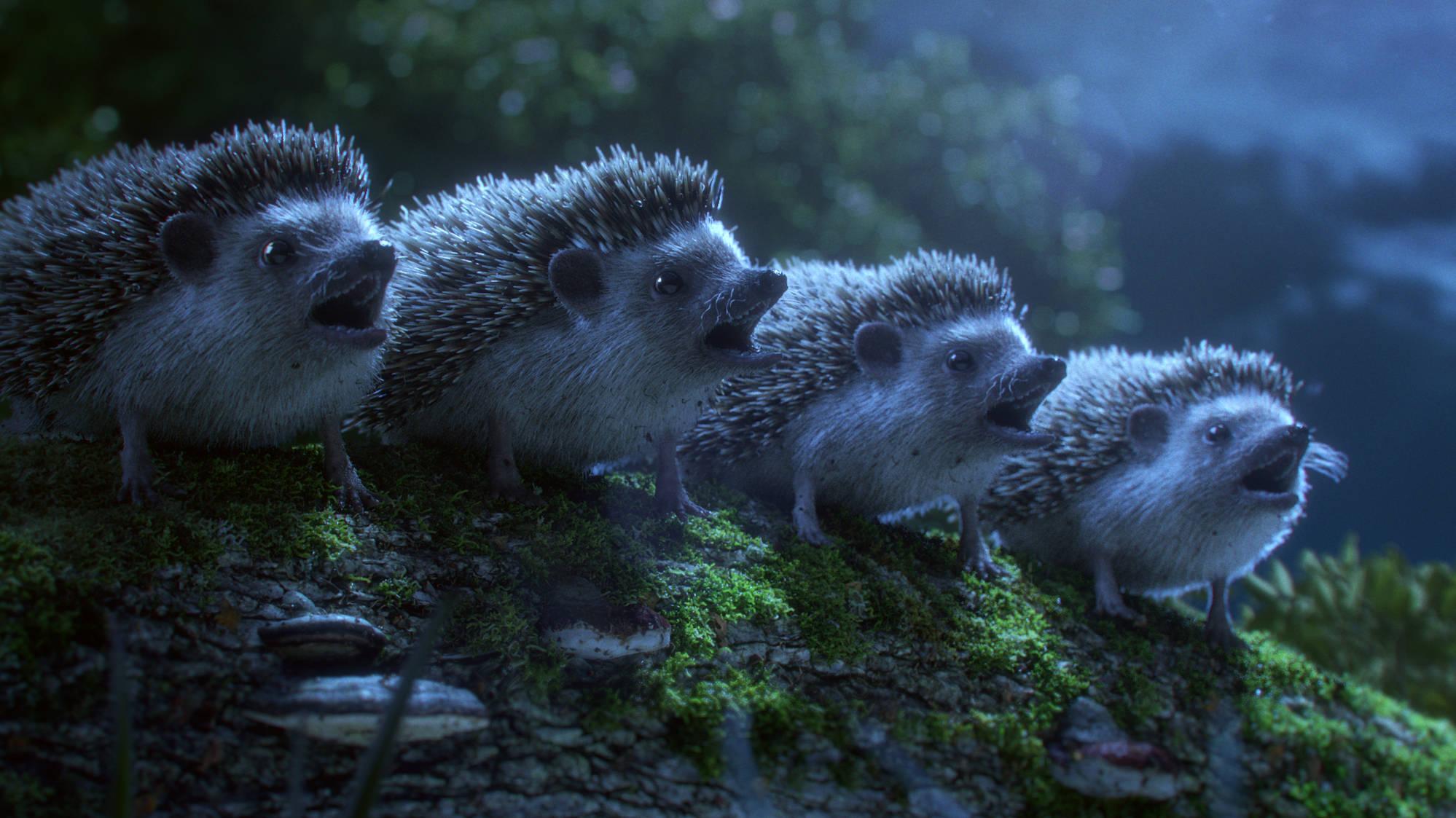 Woodland creatures sing a Bellini opera in beautiful short film