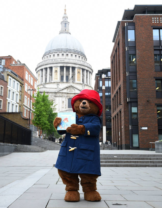 Paddington at St Paul's Cathedral